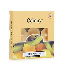 Colony - Set of nine Mango orange tea lights