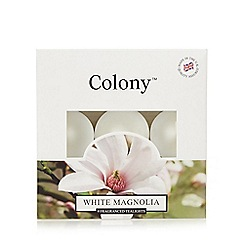 Colony - Set of nine White Magnolia tea lights