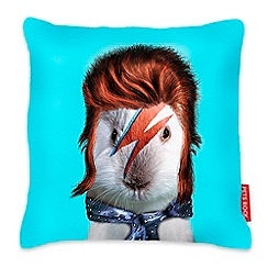 We Love Cushions - Aqua glam rock guinea pig cushion
