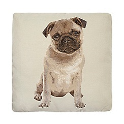 Debenhams - Beige pug cushion
