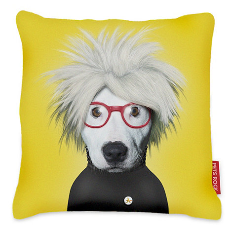 We Love Cushions - Pets roch pop soup cushion
