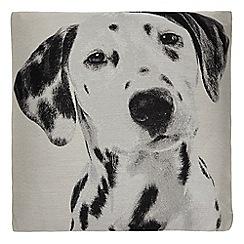 Home Collection - Grey dalmatian print cushion