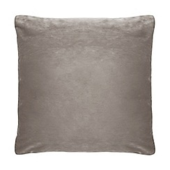 Home Collection - 50 x 50cm mink velvet cushion