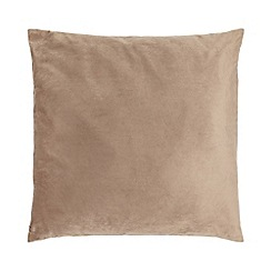 Home Collection - 60 x 60cm mink velvet cushion