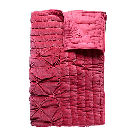Vicki Elizabeth/EDITION - Designer pink velvet throw