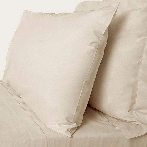 Debenhams - Cream cotton rich percale bed sheets
