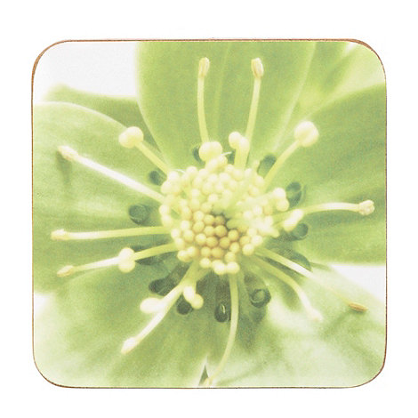 Debenhams - Set of four green photographic coasters