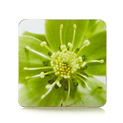 Debenhams - Set of four green hellebore coasters