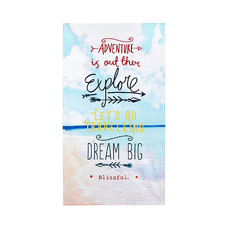 Ben de Lisi Home - Aqua +go explore+ leisure beach towel
