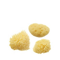 Hydrea London - Sea sponge set