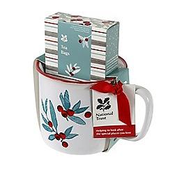 National Trust - Mug