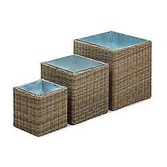 Debenhams - Light brown rattan-effect 'Winchester' set of square planters