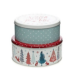 At home with Ashley Thomas - Set of two Christmas cake tins