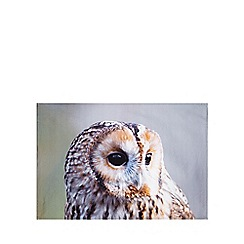 Debenhams - Grey owl print tea towel