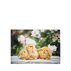 Debenhams - Photograph bunnies print tea towel