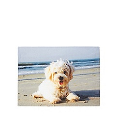 Debenhams - Photograph dog print tea towel