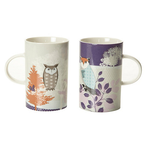 At home with Ashley Thomas - Set of two fine china owl mugs