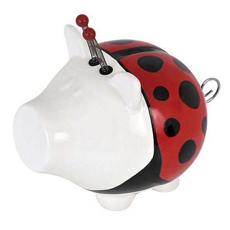 Salt & Pepper - White lady bug money box