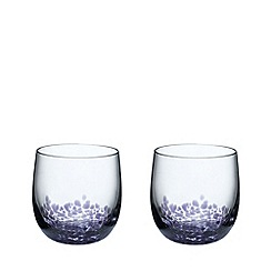 Denby - Set of 2 'Amethyst' tumblers
