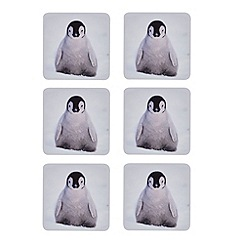 Debenhams - Set of six baby penguin print coasters