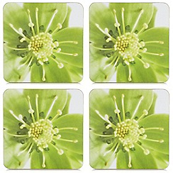 Home Collection - Set of four green hellebore coasters