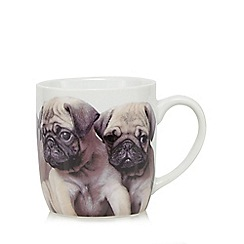 Debenhams - Porcelain photographic pugs mug