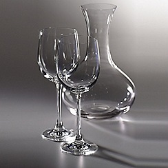Royal Doulton - Carafe and Wine Glass Set