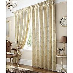 Ashley Wilde - Ivory 'Rennie' Pencil Pleat Curtains