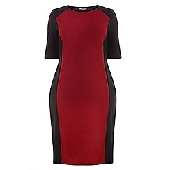 Dorothy Perkins - Curve berry panel bodycon dress