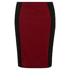 Dorothy Perkins - Curve berry panel tube skirt