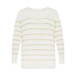 Dorothy Perkins - Dp curve ivory and gold  stripe jumper