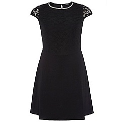 Dorothy Perkins - Dp curve black embellished lace fit and flare dress
