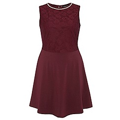 Dorothy Perkins - Dp curve wine embellished lace fit and flare dress