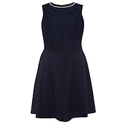 Dorothy Perkins - Dp curve navy embellished lace fit and flare dress