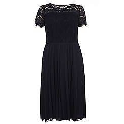 Dorothy Perkins - Dp curve navy pleated and lace top occasion dress