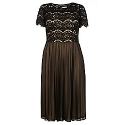 Dorothy Perkins - Dp curve nude and black pleated lace top occasion dress