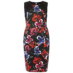 Dorothy Perkins - Dp curve floral printed lace dress