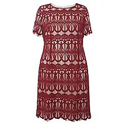 Dorothy Perkins - Dp curve berry and cream lace pencil dress
