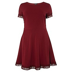 Dorothy Perkins - Dp curve berry lace trim fit and flare dress