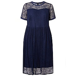 Dorothy Perkins - Dp curve navy lace fit and flare dress