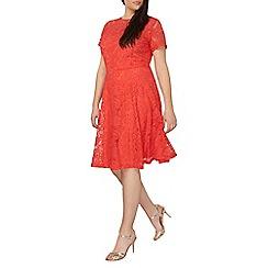 Dorothy Perkins - Curve red lace midi dress