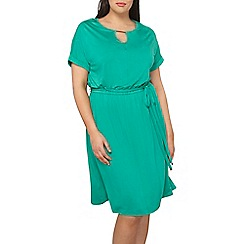 Dorothy Perkins - Curve jersey bar midi dress