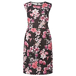Dorothy Perkins - Curve pink floral print fit and flare dress