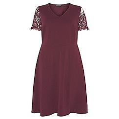 Dorothy Perkins - Curve berry red lace sleeves fit and flare dress