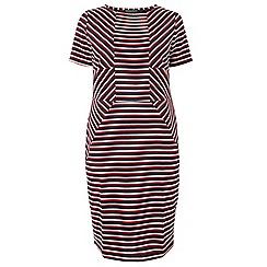 Dorothy Perkins - Dp curve red stripe bodycon dress