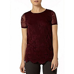 Dorothy Perkins - Mulberry contrast lace top