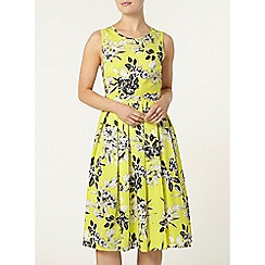Dorothy Perkins - Lime floral sateen dress