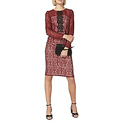Dorothy Perkins - Red lace pencil dress