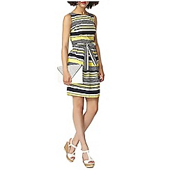 Dorothy Perkins - Stripe cotton fit and flare dress