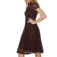 Dorothy Perkins - Wine fit and flare dress